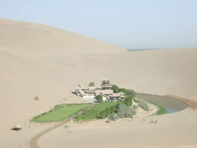 砂漠の万里の長城1 長城と地黄